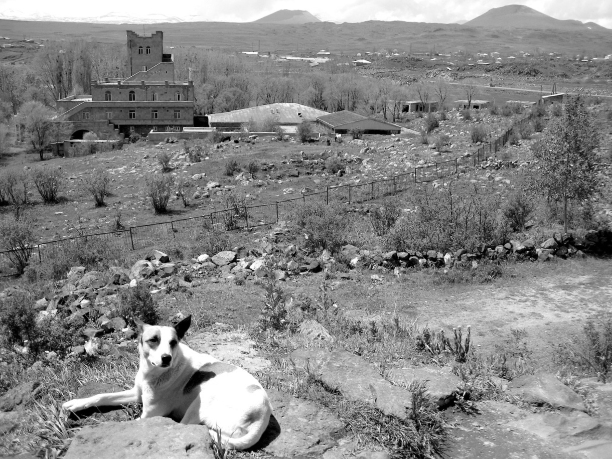 Foto: Autoausflug. Aus: Eriwan. Kapitel 3. Aufzeichnungen aus Armenien von Marc Degens.