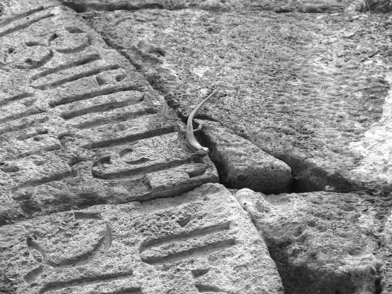 Foto: Kloster Tatev. Aus: Eriwan. Kapitel 4. Aufzeichnungen aus Armenien von Marc Degens.